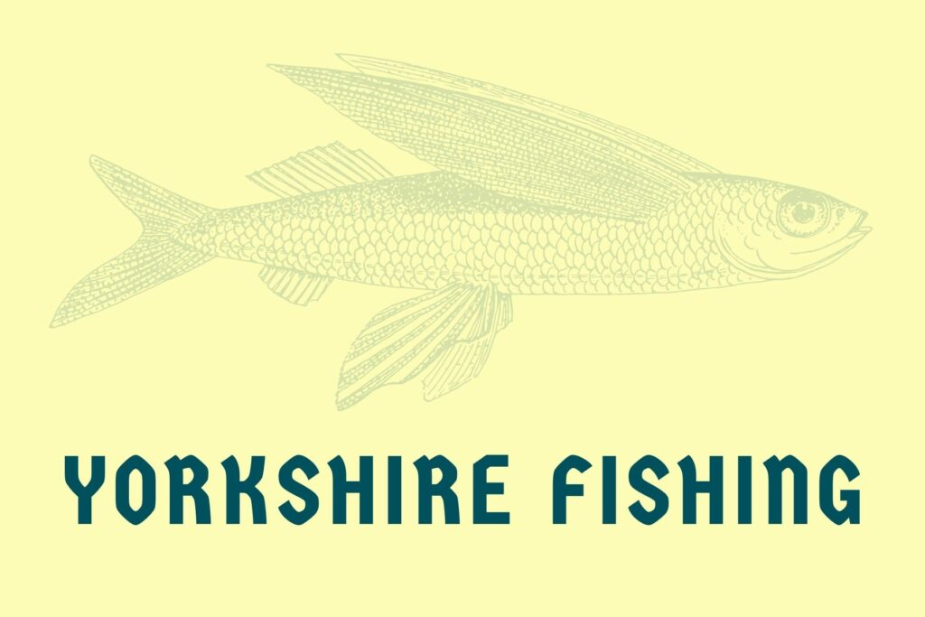 yorkshire fishing